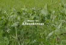 Η Φυσική Καλλιέργεια με τον Παναγιώτη Μανίκη | Μέρος 3ο | Χλοοτάπητας