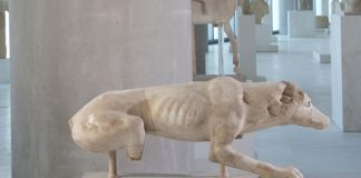 Καλοκαίρι παρέα με τα ζώα του Μουσείου | Εκπαιδευτικό πρόγραμμα για παιδιά 4-6 και 7-12 ετών στο Μουσείο Ακρόπολης