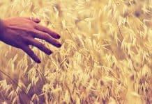 Χωρίζοντας Συνειδητά - της Μαριάννας Χρυσικάκου