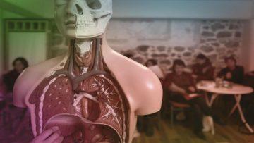 Ιατρικά (Ανατομία - Φυσιολογία) | Ακαδημία Αρχαίας Ελληνικής & Παραδοσιακής Κινέζικης Ιατρικής, Κηφισιά