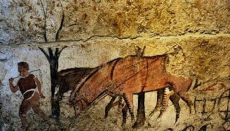 λιπάσματα αρχαίοι Έλληνες