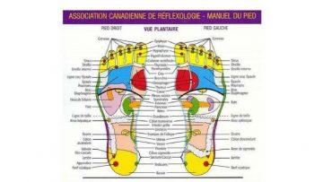 """Εισαγωγικό σεμινάριο γνωριμίας με τη Ρεφλεξολογία """"Ρεφλεξολογία & Υγεία για όλους""""   Φιλύρα"""