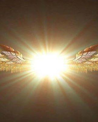 Πρώτο Ακαδημαϊκό Έτος Μύησης στη Διδασκαλία των Αγγελιοφόρων του Φωτός | Στάμος Στίνης