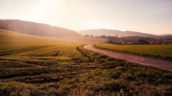 Παραχώρηση γης σε ανέργους και κατά κύριο επάγγελμα αγρότες