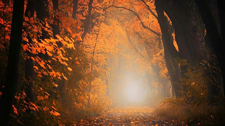 2ος βαθμός Reiki: Προχωρώντας στο Μονοπάτι του Φωτός! | Ο ήχος της ψυχής