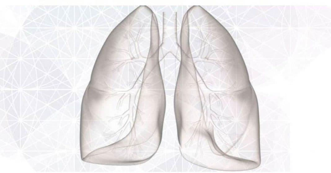πνευμονας