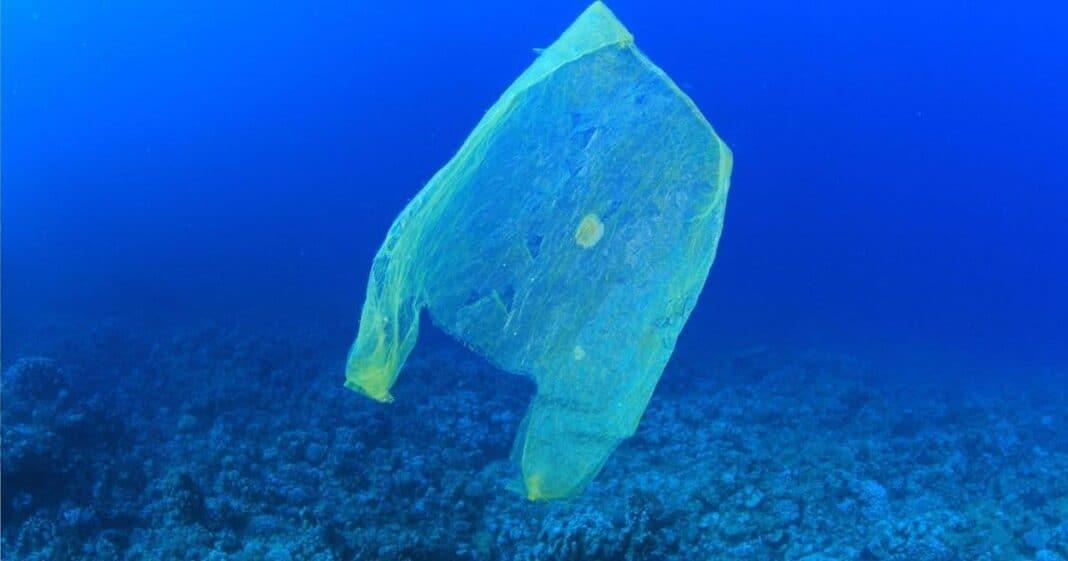 παγκόσμια ημέρα κατά της πλαστικής σακούλας
