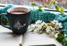 cozy_σπίτι_χειμώνας