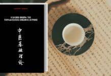 Βιβλίο Η Βασική Θεωρία της Παραδοσιακής Κινέζικης Ιατρικής