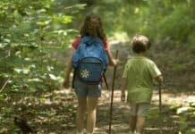 σχολεία-του-δάσους-και-της-φύσης