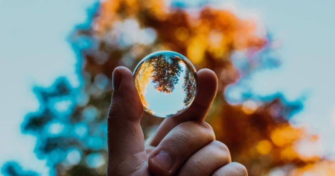 Τα καλά νέα για τον πλανήτη μας | Ιανουάριος 2021