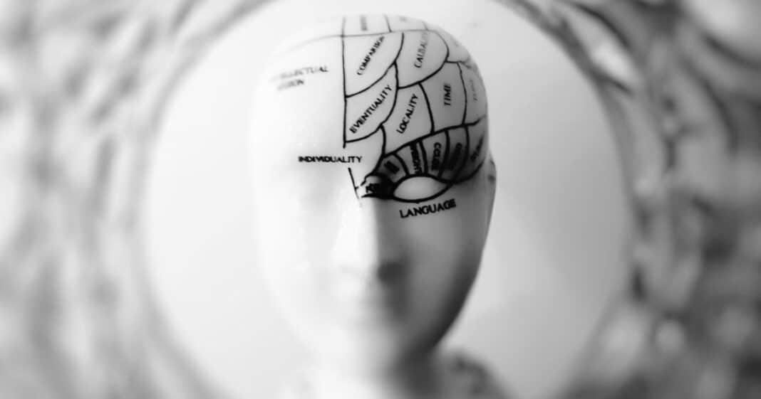 προσωπο-εγκέφαλο