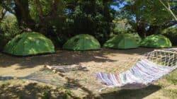 hapiness yoga camp retreat