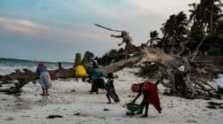 the art of living Ζανζιβάρη