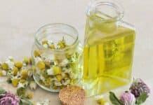 Θεραπευτικά βότανα | Ένας πολύτιμος οδηγός χρήσης